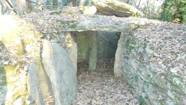 tomba etrusca saturnia
