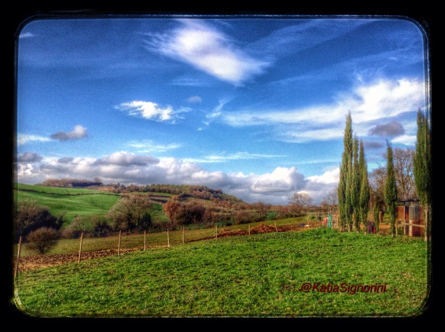 Panorama maremmano, foto di Katia Signorini