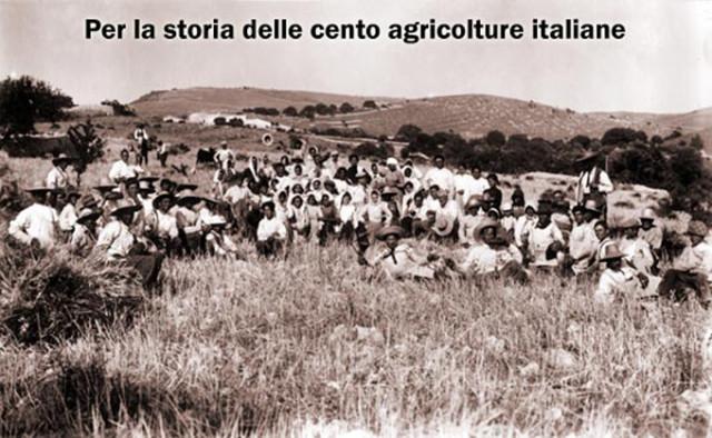 Gruppo di mezzadri impegnati nella Mietitura in un ex feudo nelle campagne dell'agro grossetano.                                                                   (foto da itempidellaterra.org)