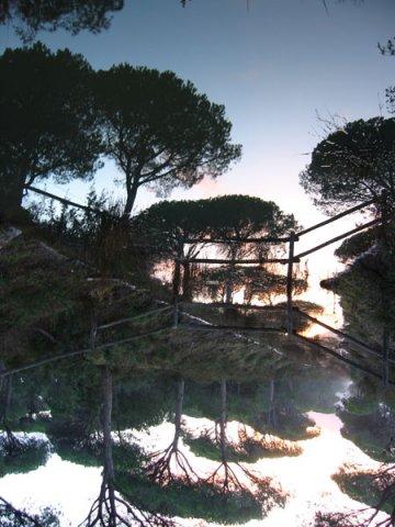 Foto del Parco Regionale della Maremma