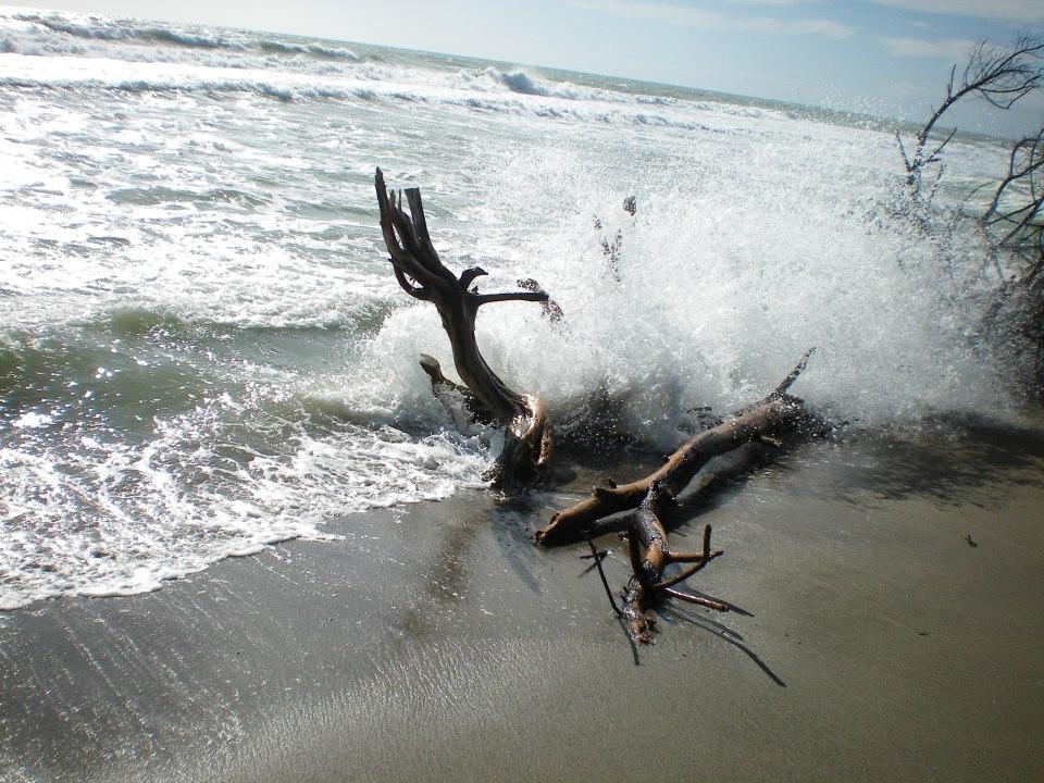 spiagge-parco-maremma