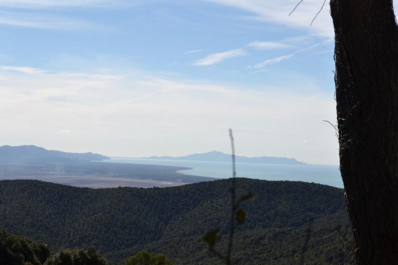 panorama-da-tirli
