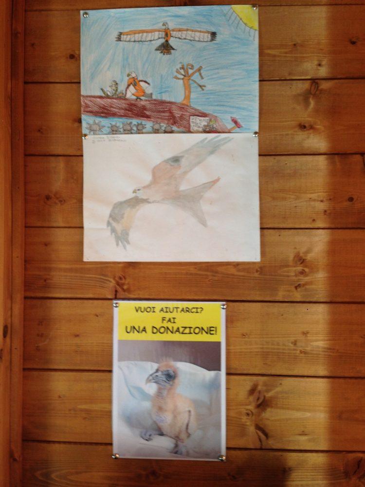 disegni-di-giovani-visitatori-img_8281